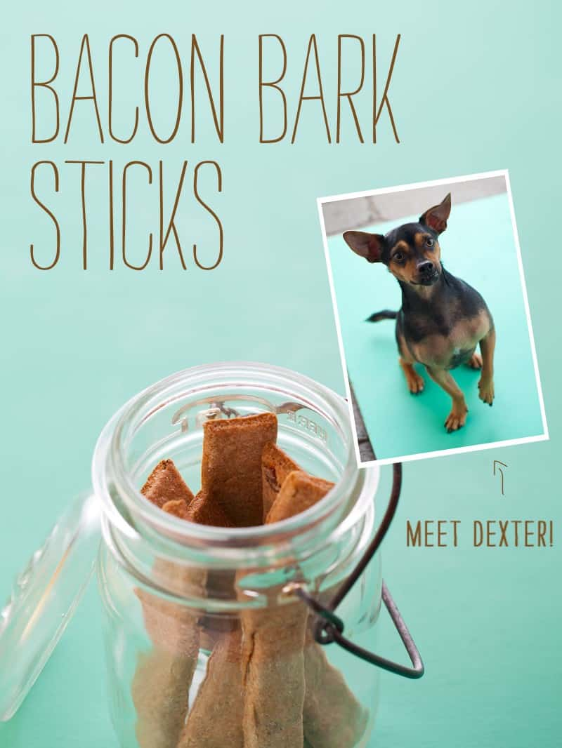 Bacon Bark sticks, a dog treat recipe.