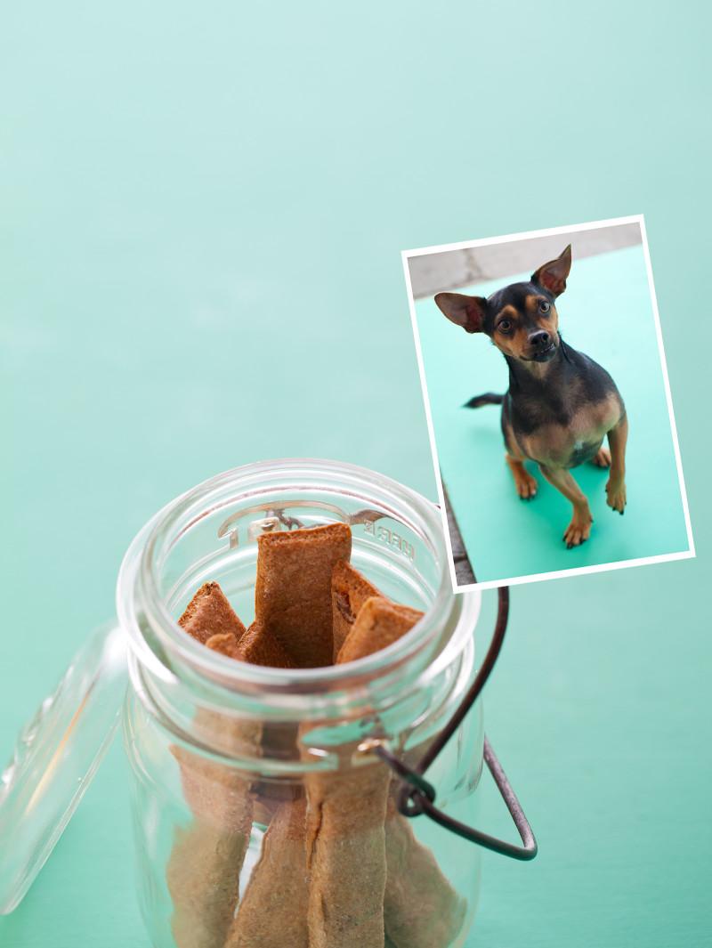 Bacon Bark sticks, a dog treat recipe.