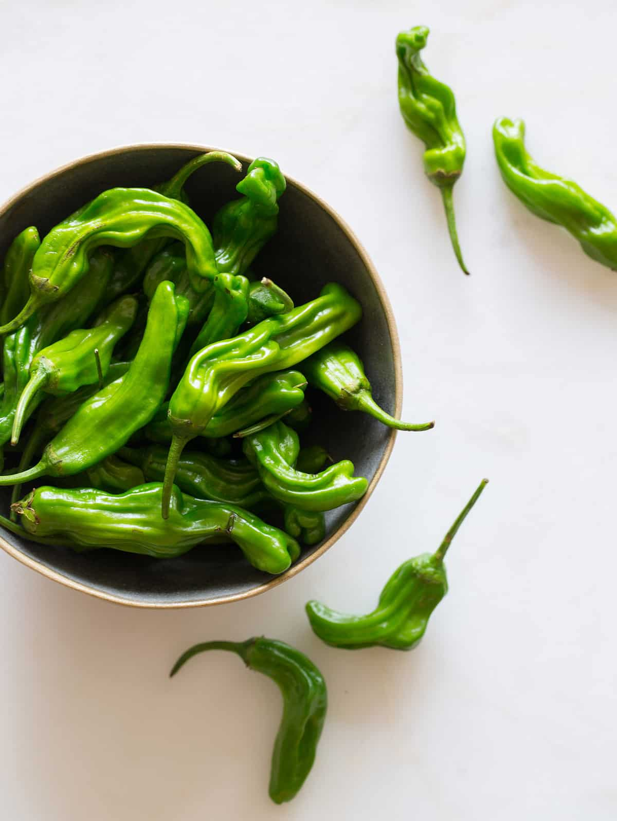 peppers with blistered shishito peppers padrón peppers shishito