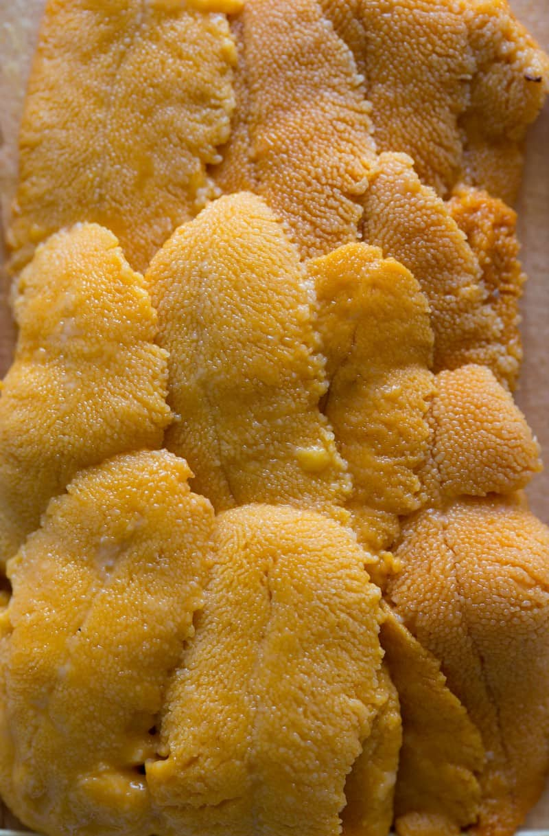 Fresh uni to be made into a Uni Risotto.