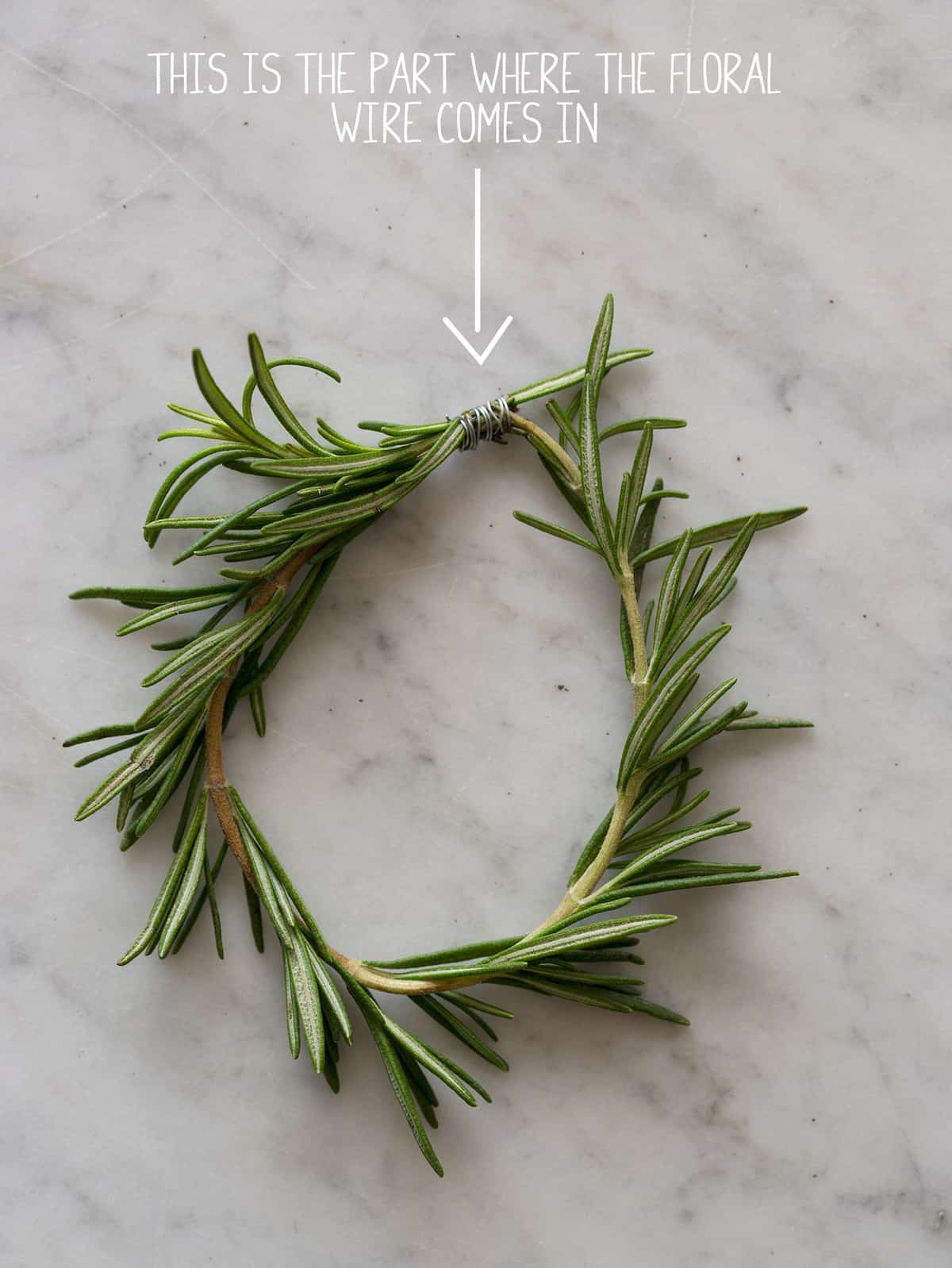 Rosemary Wreath Place Cards directions Rosemary