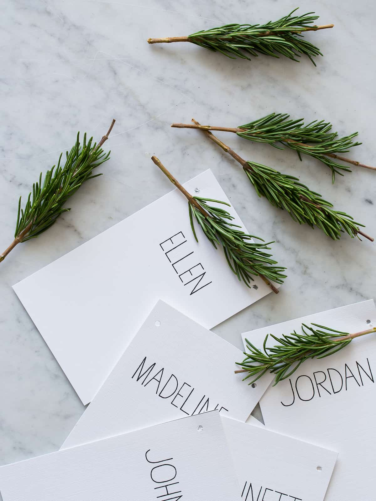 Rosemary Spring Place Cards