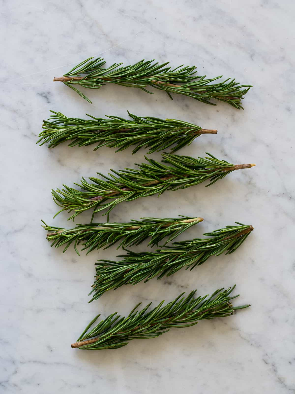 dried rosemary sprigs - DriverLayer Search Engine