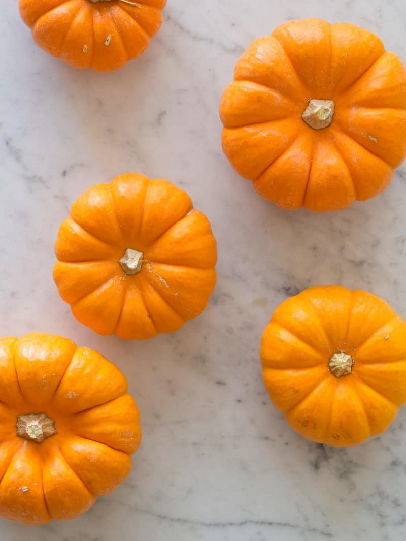 Mini Pumpkins for No Bake Pumpkin Creme Brulee