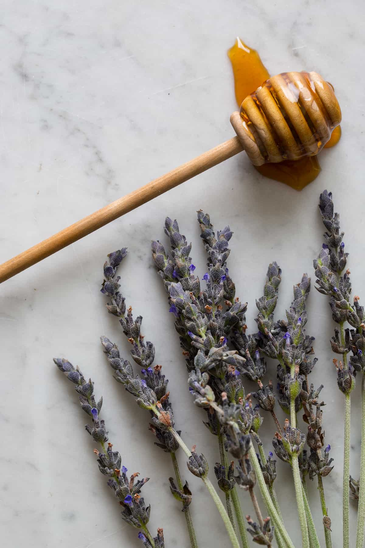 Homemade Honey and Lavender Simple Syrup