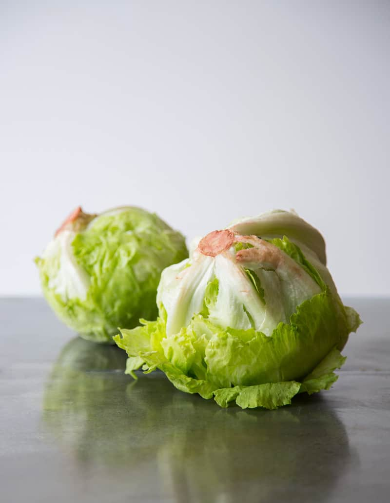 Iceberg Lettuce for a Wedge Salad Recipe
