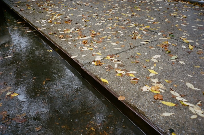 raining_5