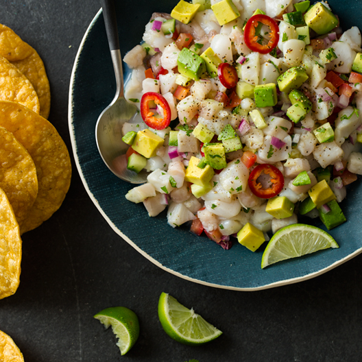 simple_ceviche_index