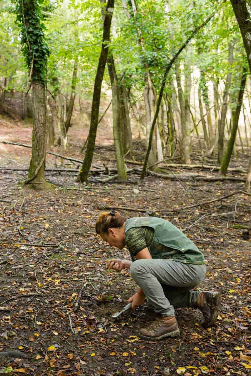A woman examining dirt, hunting for truffles in a forest.