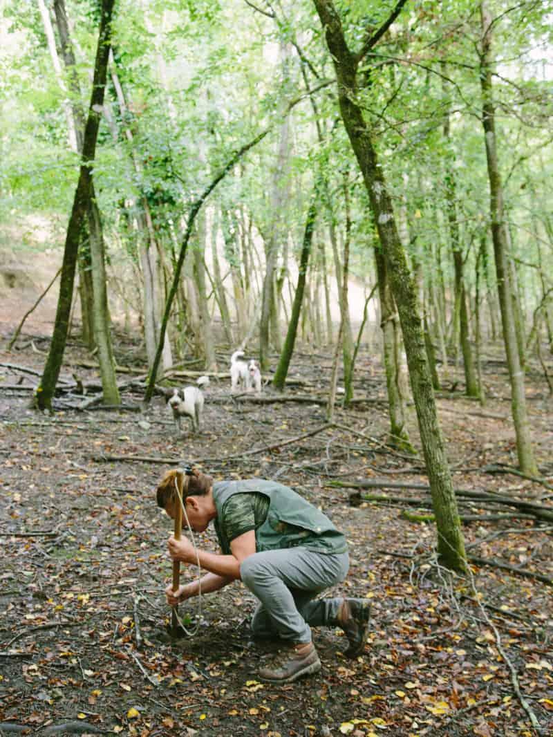 truffle_hunting_italy