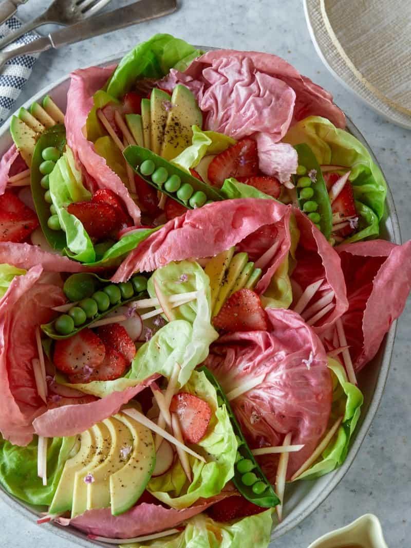 pink_radicchio_butter_lettuce_salad