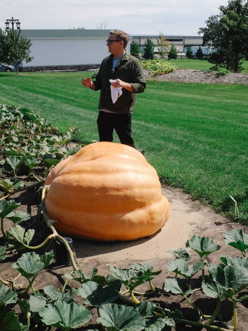 A man next to a giant gourd in a garden.
