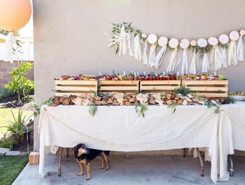 Table with charcuterie and cheese boards, salads, garland backdrop and a cute dog under the table.