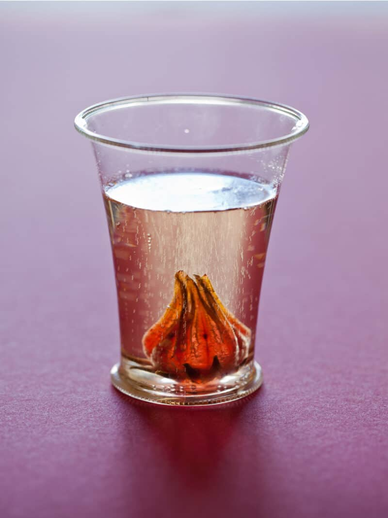 A close up of a glass of hibiscus ginger champagne cocktail.