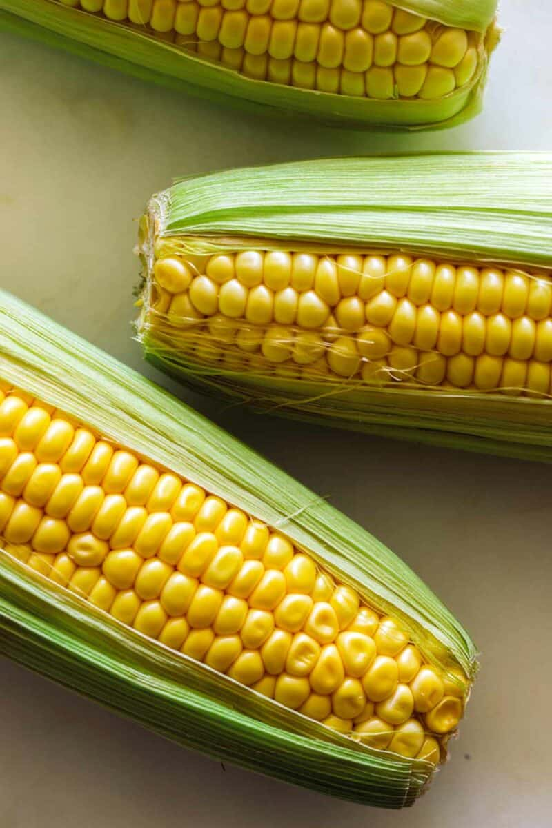 A close up of corn on a the cob for elote fritters.
