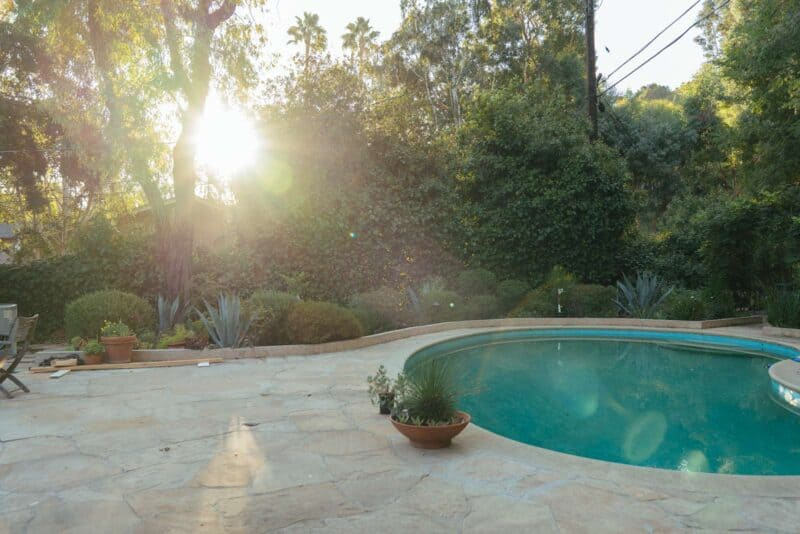 A lush garden by a pool.