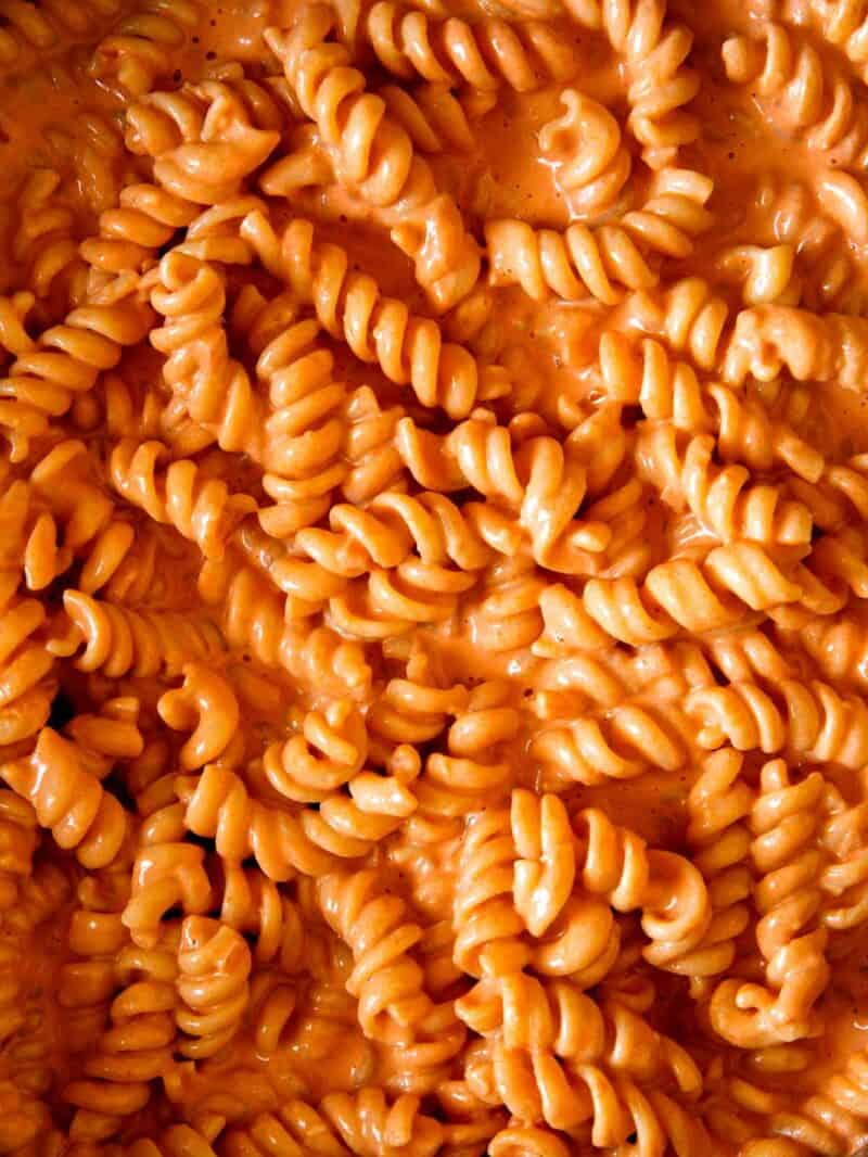 close up of rotini tossed in vodka sauce