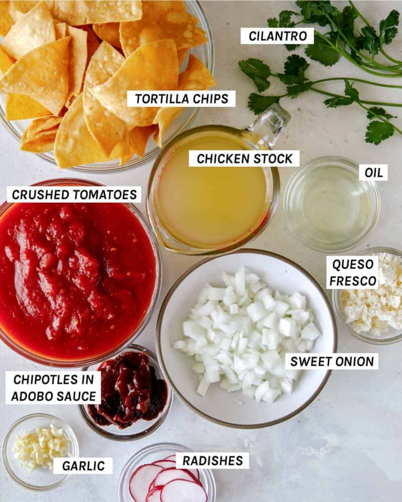 Ingredients for everything you'll need to make chilaquiles