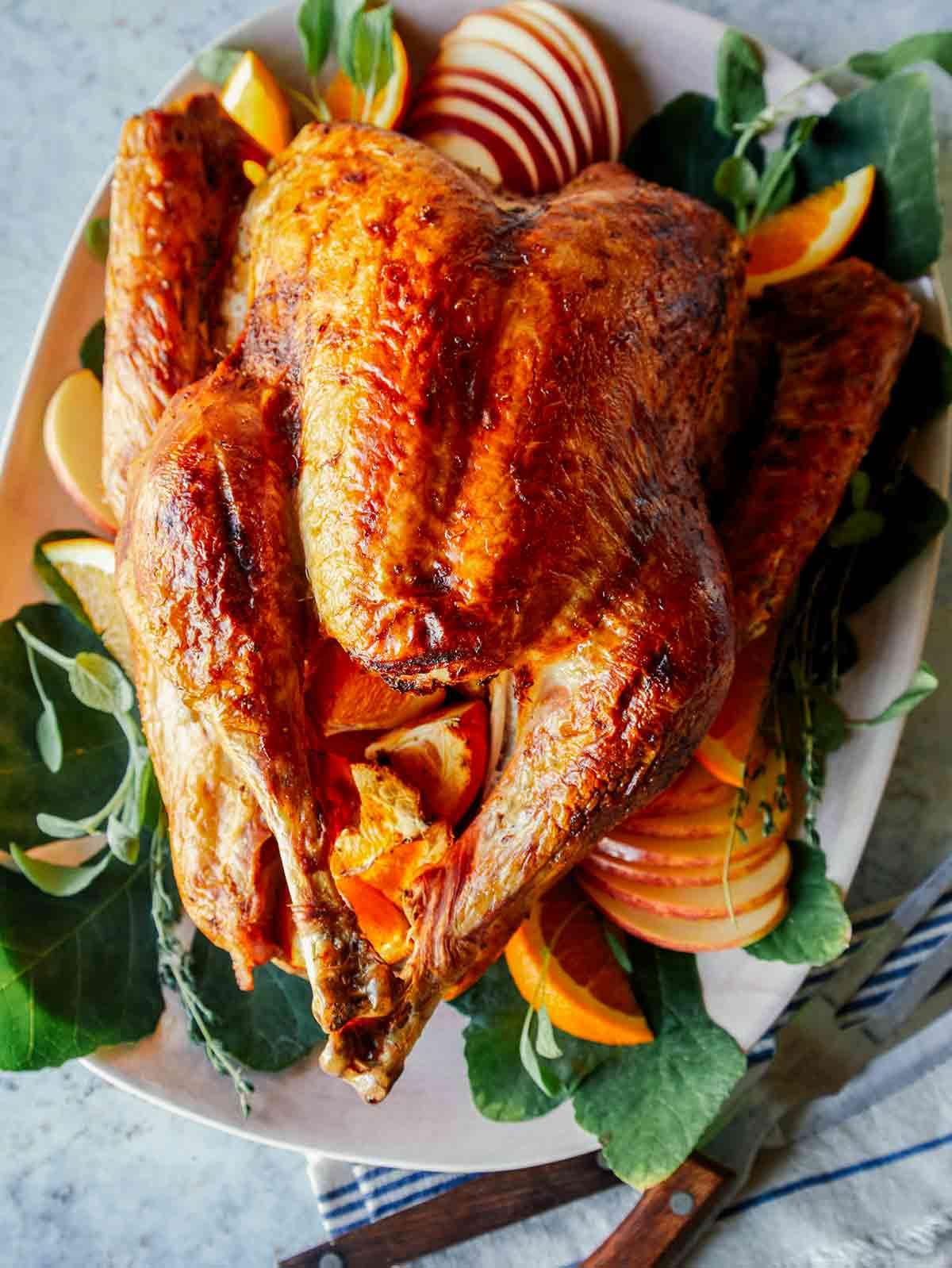 Citrus dry brined turkey on a platter.