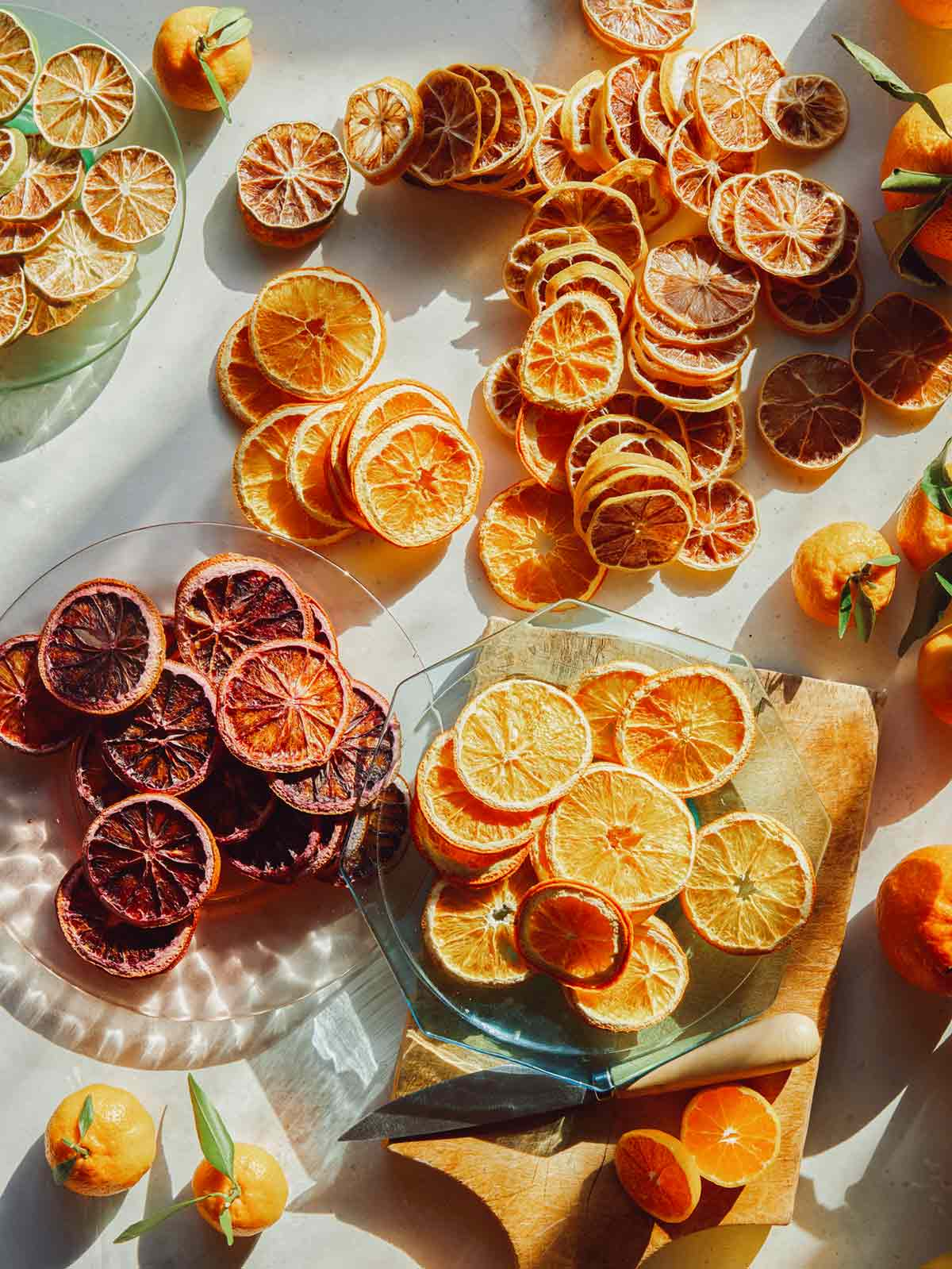 Dehydrated citrus wheels spread out on a surface on plates.