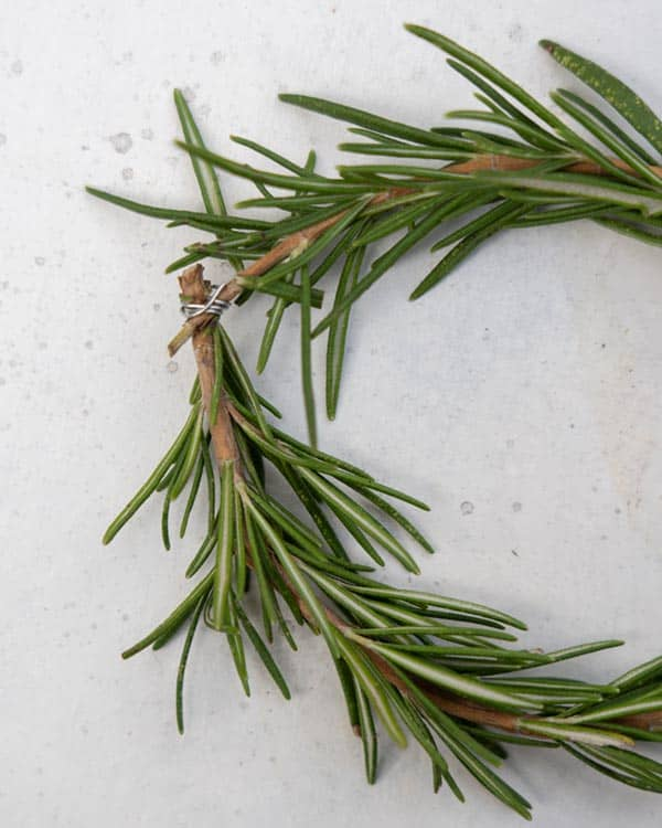 Attaching the ends of a rosemary sprig with floral wire to make a wreath.