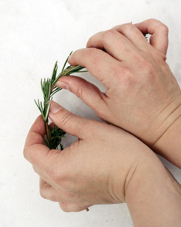 Bend the rosemary sprigs with your hands to make it able to go into a circle.