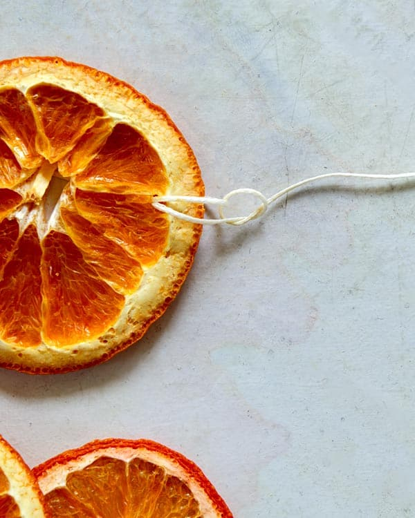 Making a knot at the end of dehydrated citrus.