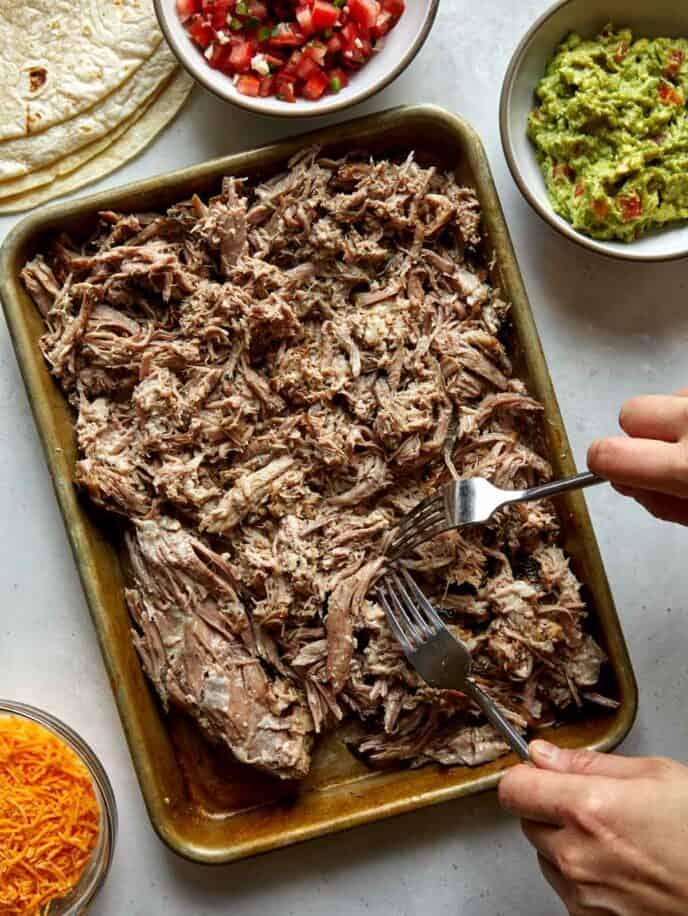 Shredding pork on a baking sheet for carnitas.